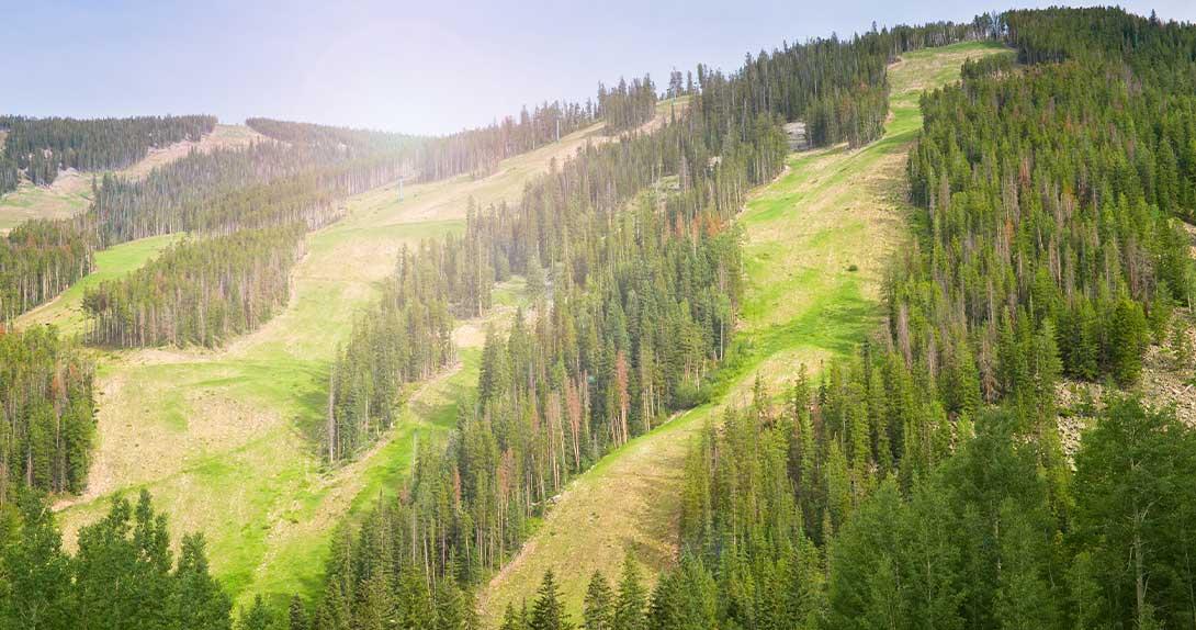 2020 Colorado