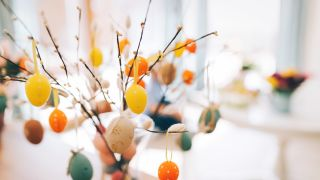Homemade easter eggs in colors