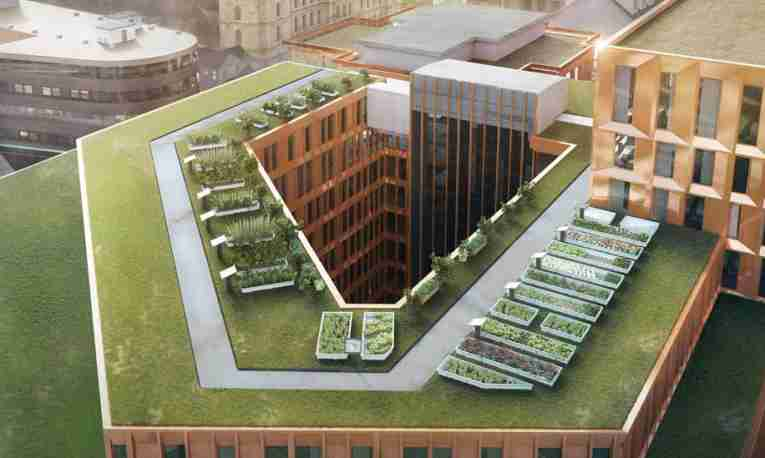 urban-garden-grow-hub-clarion-hotel-the-hub.jpg