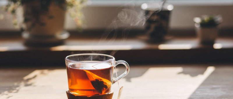 Чай и мозг. Нейрофизиология здоровья и долголетия