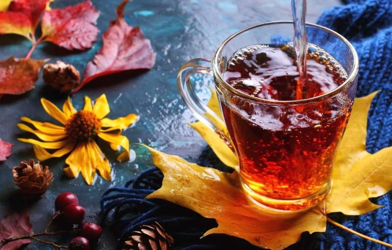 пори року і чай
