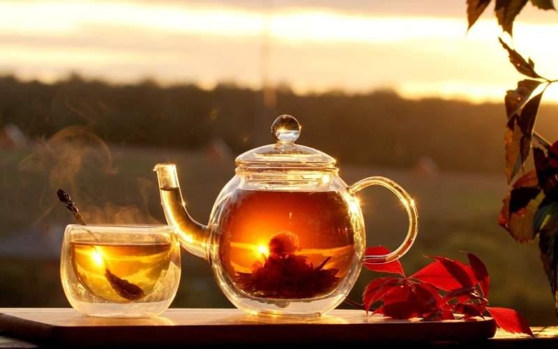 Биохимический состав чая