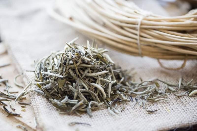Белый чай. Вред и польза белого китайского чая