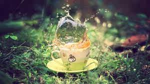 Кто снабжает мир чаем