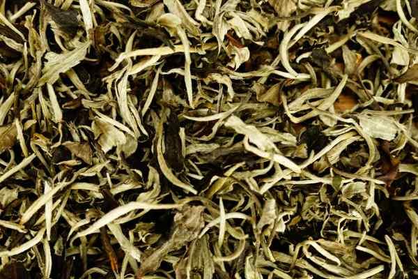 Місячне Сяйво (月光白 Юе Гуан Бай) - білий чай пуер