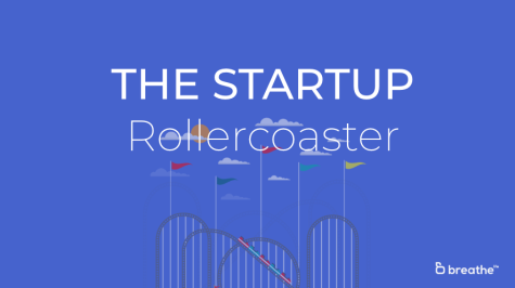 The Startup Roller Coaster