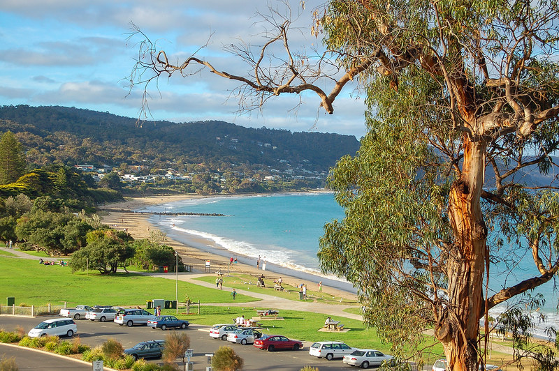 lorne-beach-victoria-australia-vic-gumtree