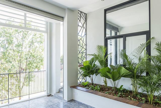 Modern Interior Plants