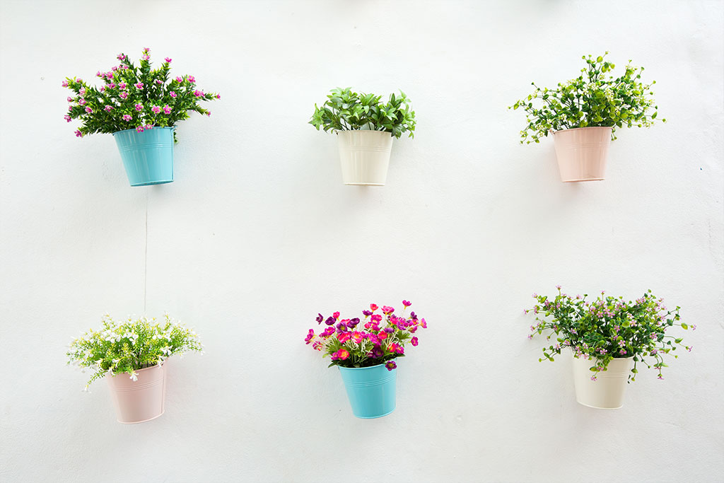 flower-pot-with-white-wall