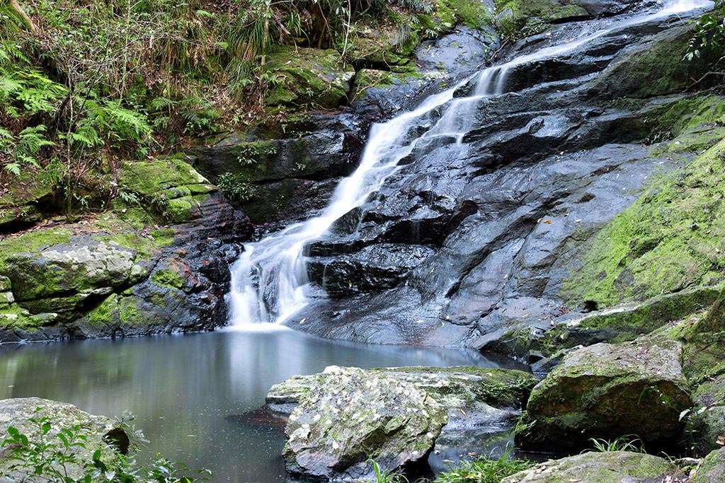 waterfall-sunshine-coast-hinterlands-qld