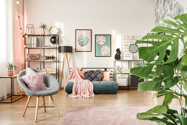 living-room-interior-swiss-cheese-plant