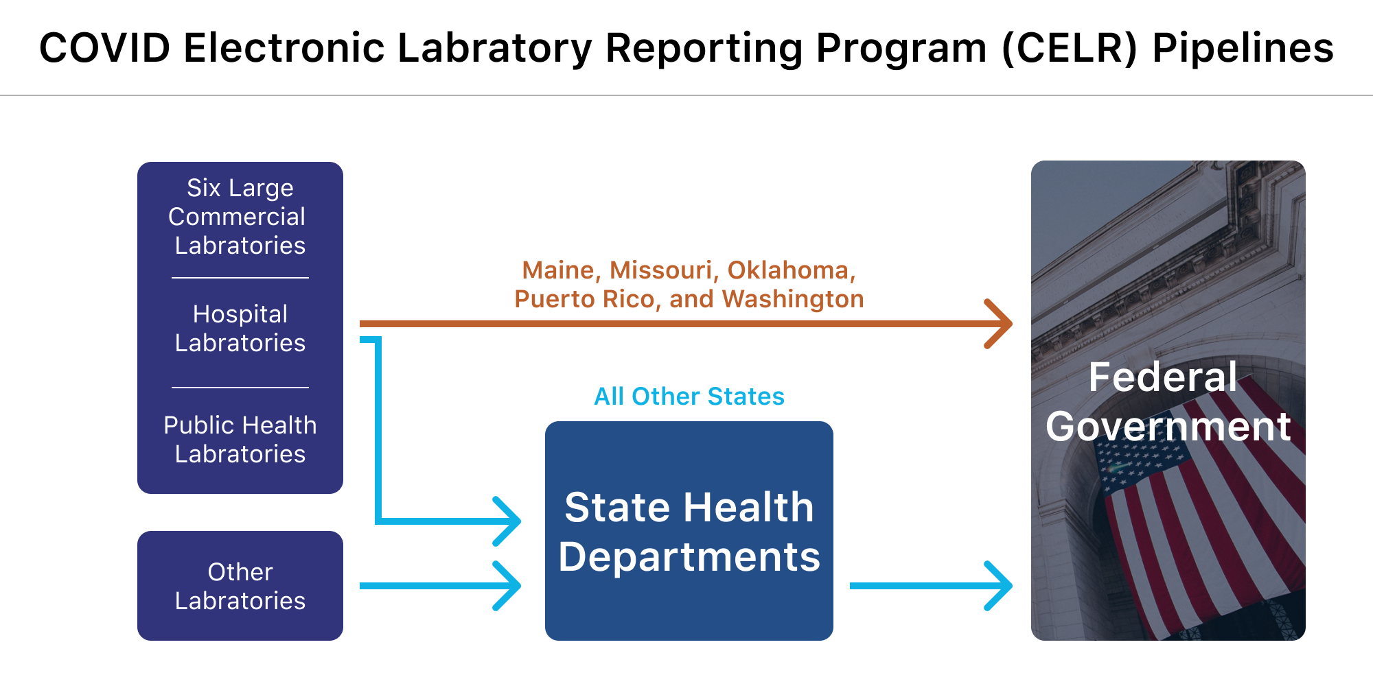 A flowchart shows the path of testing data from laboratories to the federal government. In five states—Maine, Missouri, Oklahoma, Puerto Rico, and Washington—the data flows directly from a portion of laboratories to the federal government. In all other states, the data goes from laboratories to the state health department before making its way to the federal government.