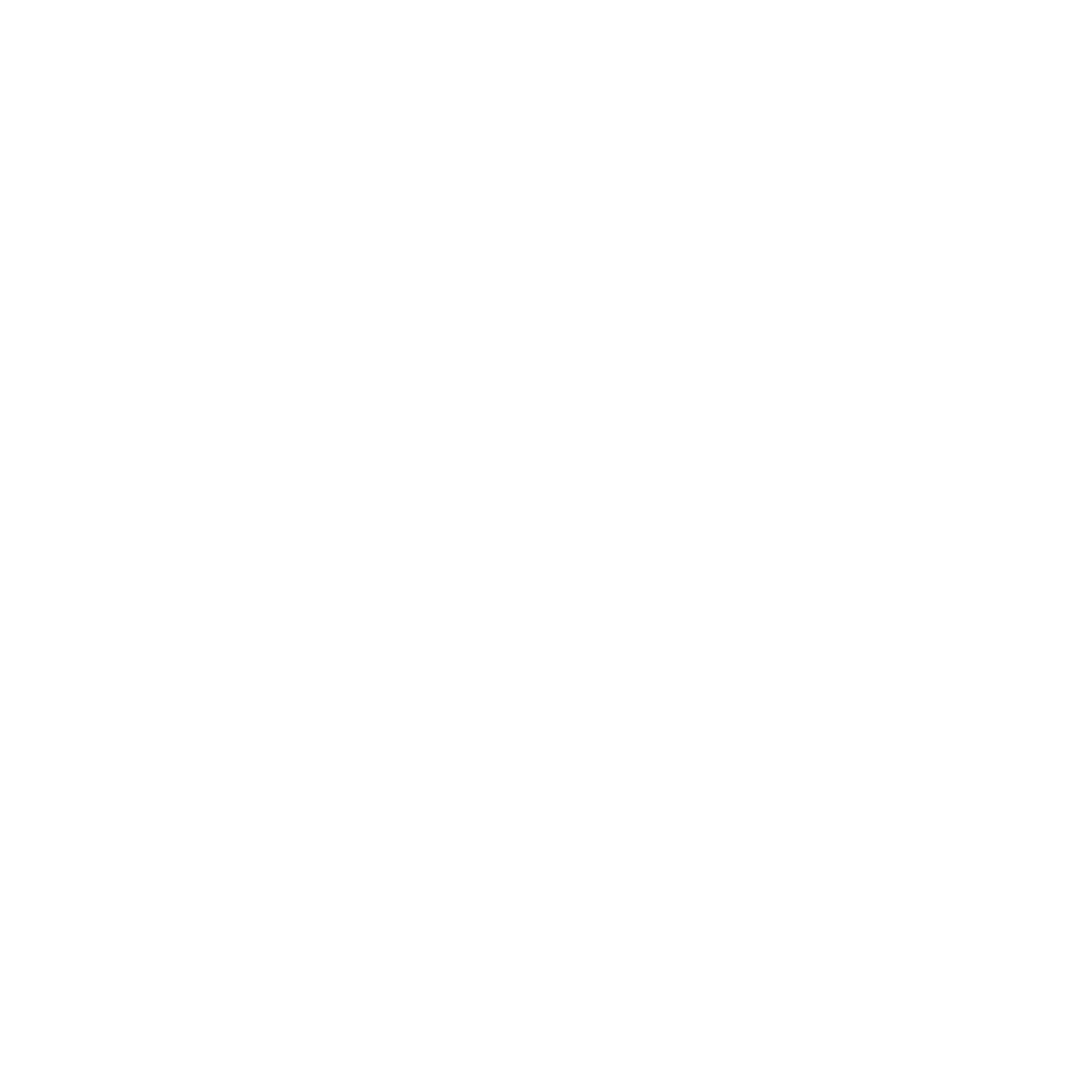 roaster Small Planes's logo
