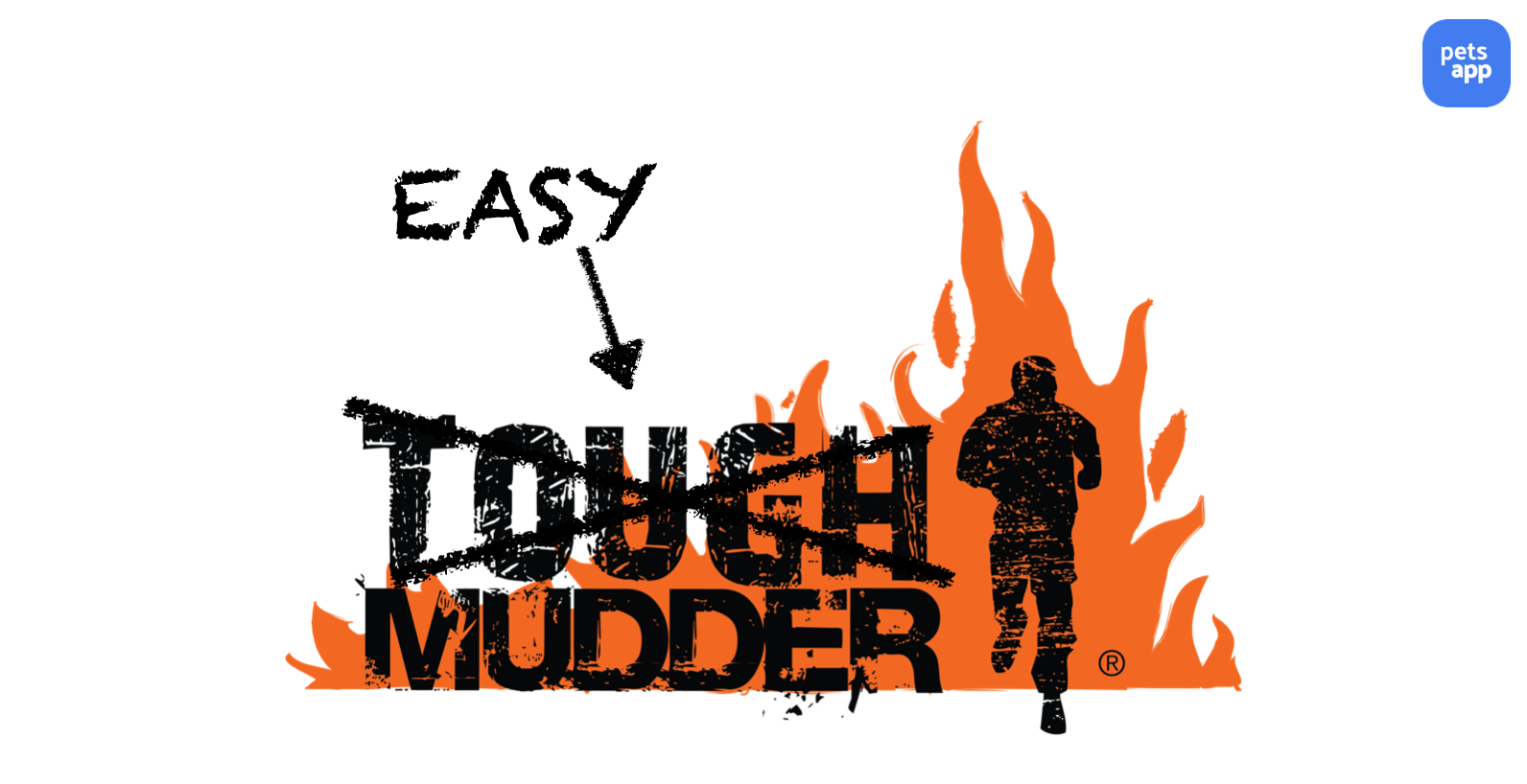 A Practitioner's Guide - Easy mudder