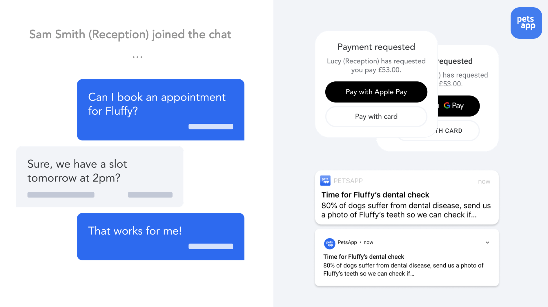 text chat, payments and push notifications