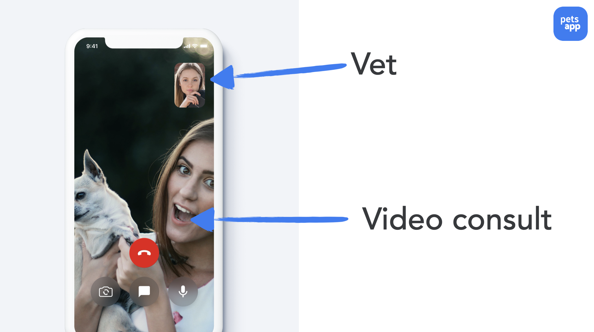 vet video consults