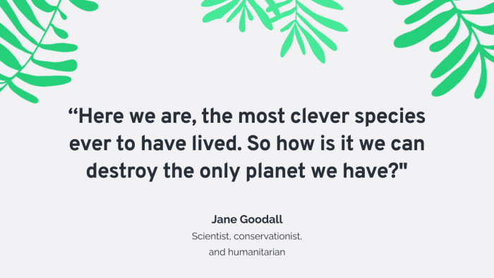Humans are the most clever species ever to have lived. How is it we can destroy our only planet?