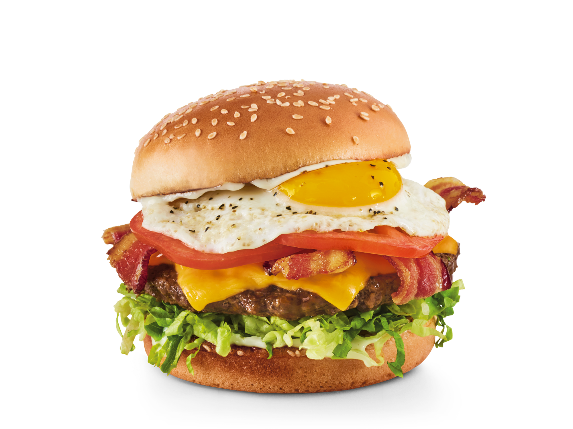Gourmet Burgers and Brews - Red Robin