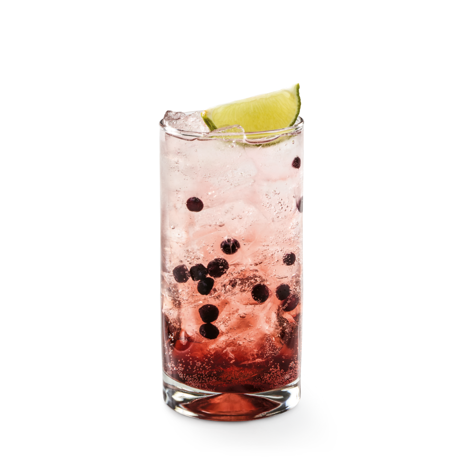 Dasani® Sparkling Berry with light blackerry flavor, blueberries and a lime garnish.