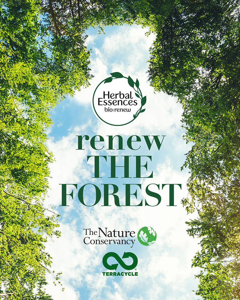 Herbal Essences - renew the forest