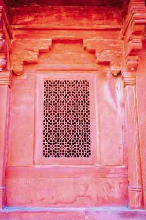 202003 export India-Jaipur-Travel 615