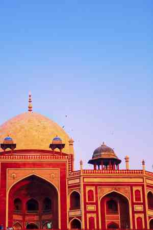 202003 export Delhi-India-Travel 493