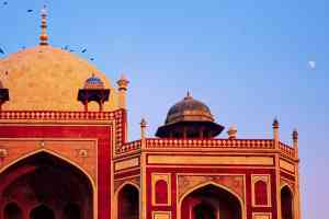 202003 export Delhi-India-Travel 494