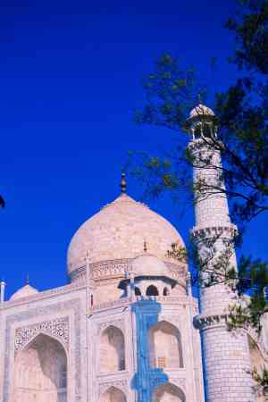 202003 export Agra-India-Travel 608