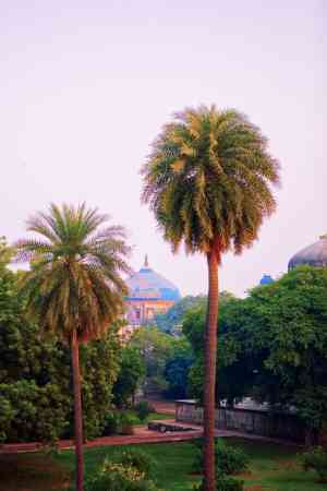 202003 export Delhi-India-Travel 504