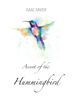Ascent of the Hummingbird