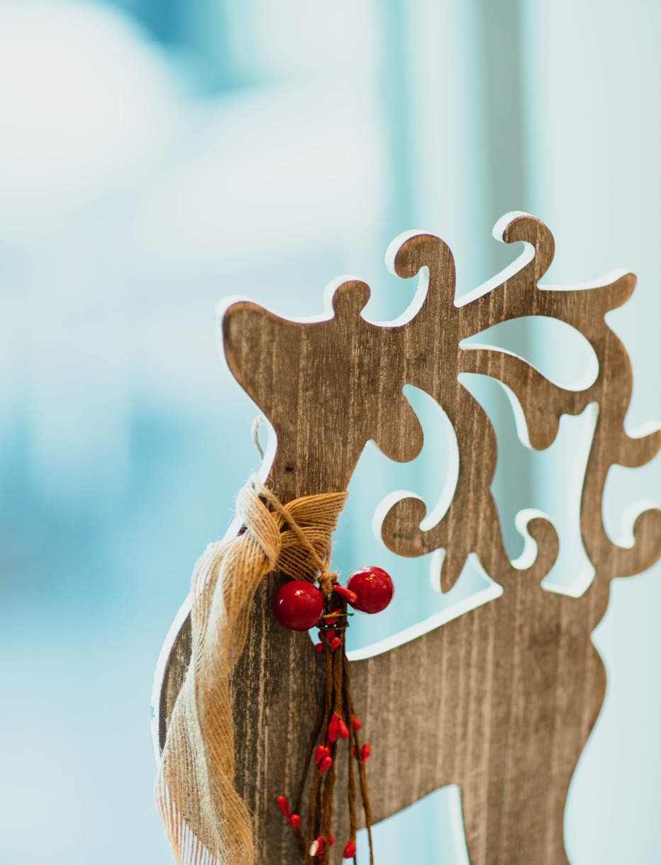 Setting Up Your Reindeers For Success