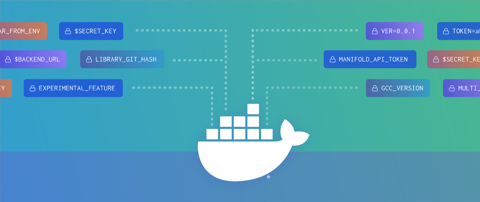Arguments and variables in Docker