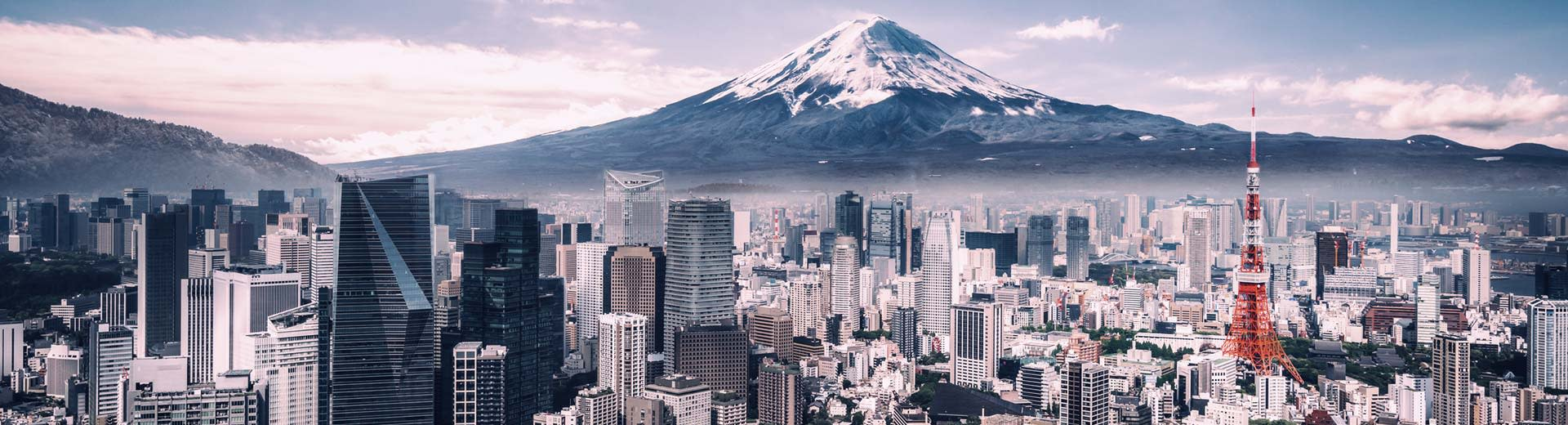 The sprawling city of Tokyo lies before the famous Mount Fuji, with more skyscrapers than you can count in the foreground