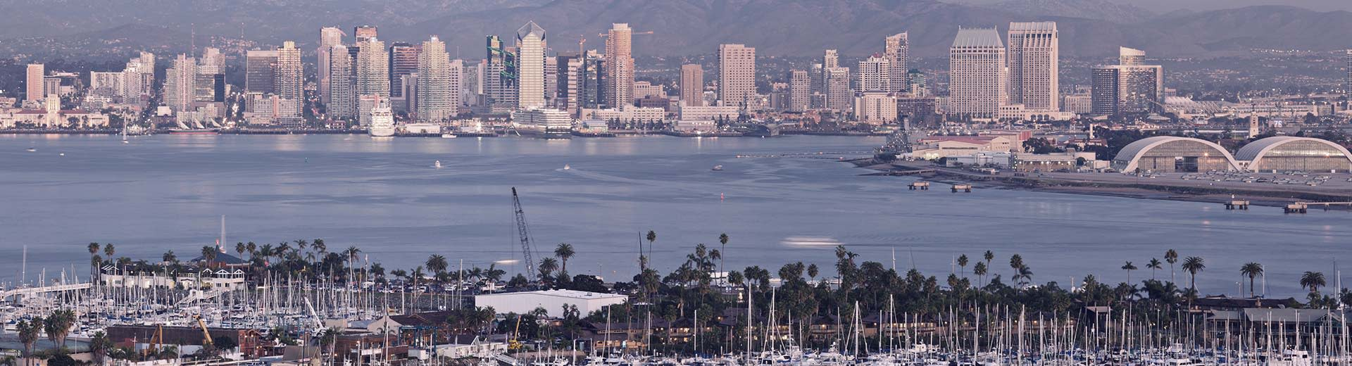 Palm trees dominate the foreground, while across a body of water lie the white, tall buildings of San Diego in the heat