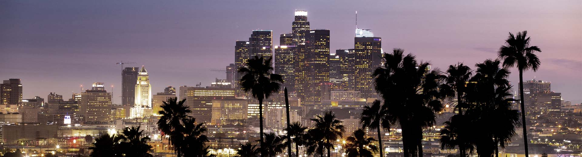 Palm trees at night and the downtown skyscrapers of Los Angeles light up the sky