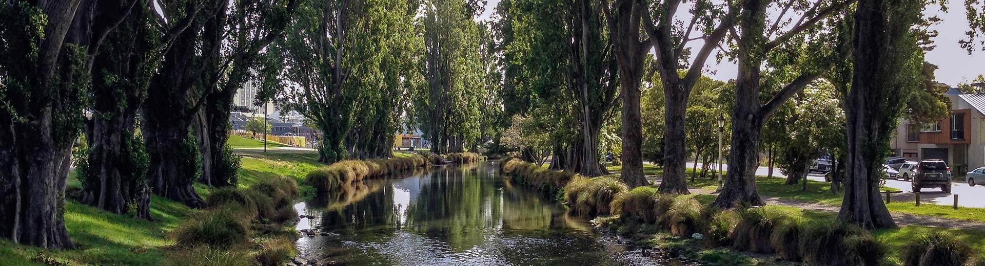 An idyllic canal surrounded by trees in Christchurch