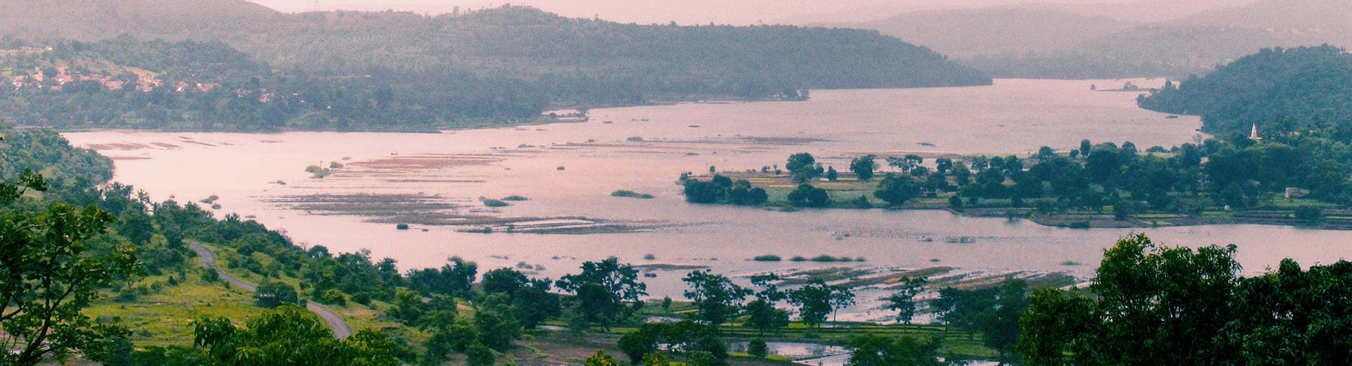 A vast, marshy wetland near Pune, with trees stretching as far as you can see in the half-light of dusk or dawn