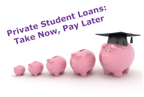 Private Student Loan Relief   Default or ....?