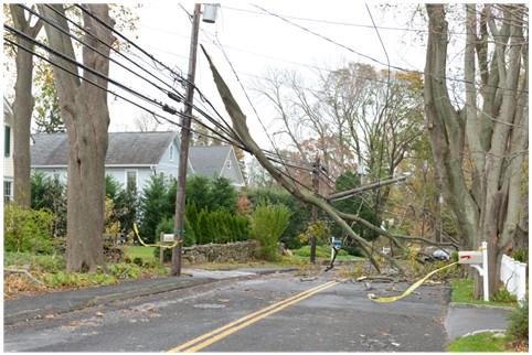 Coping with Hurricane Sandy | Beyond Hurricane Insurance