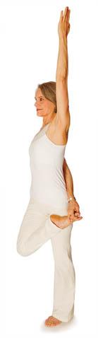 the 5 prana vayus in yoga apana