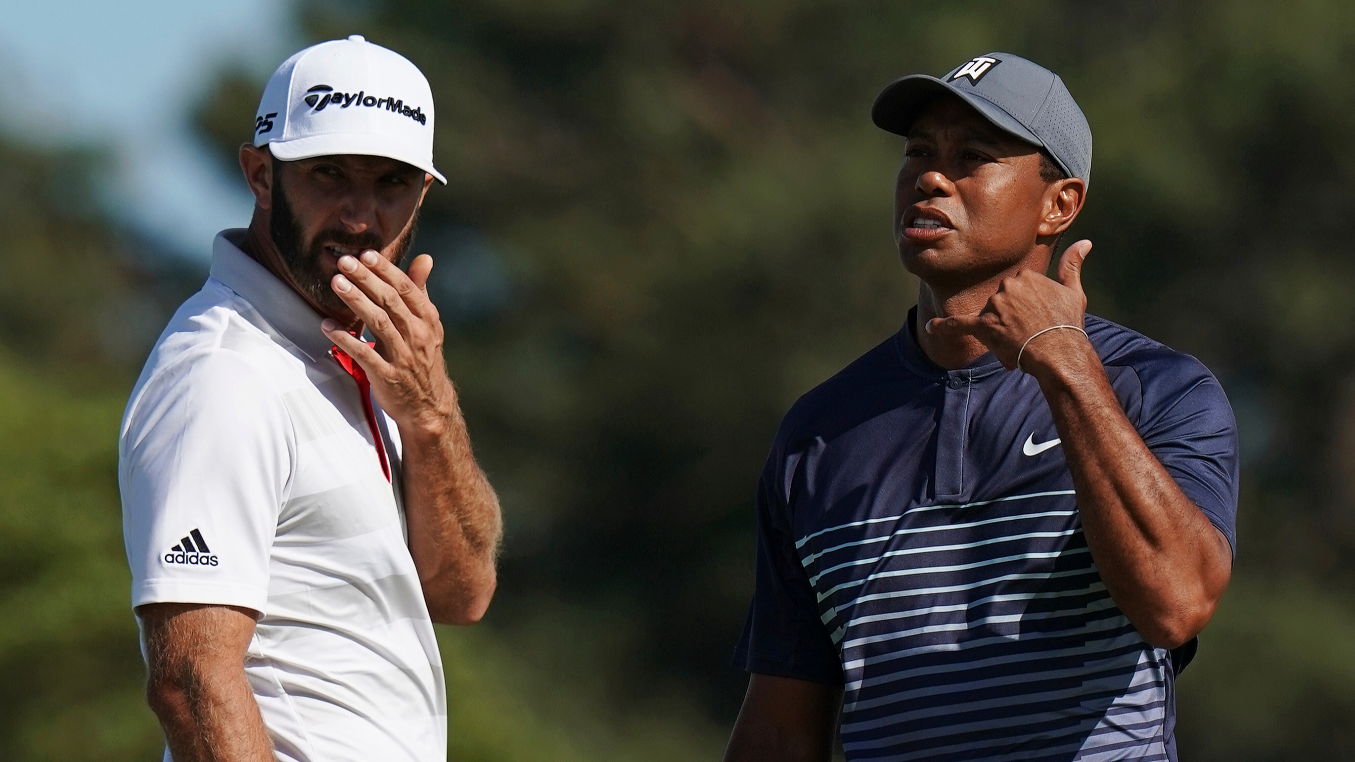 Presidents cup betting odds betting odds explained 7&4