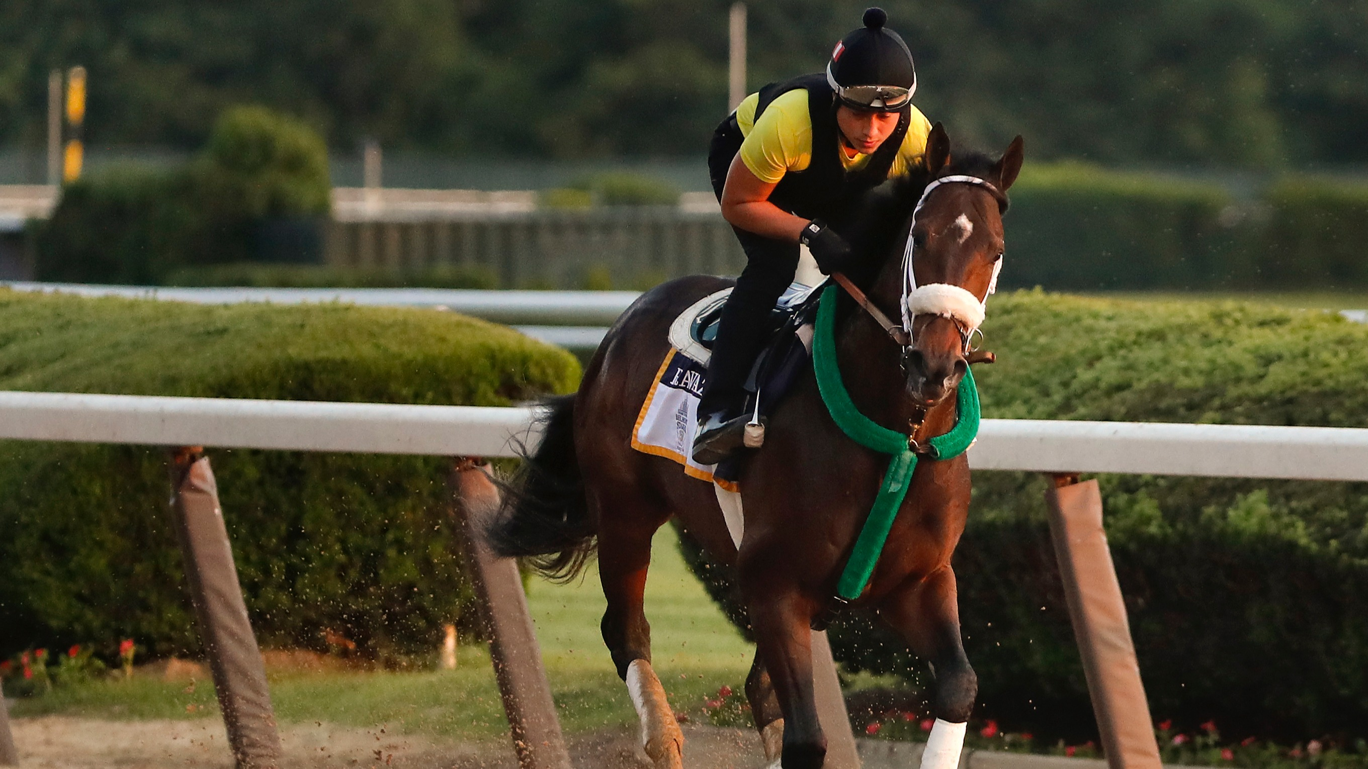 Parx Racing odds, preview and picks: Cotillion Stakes