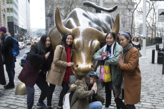 Wall Street Bull & Students