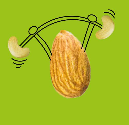 weight lifting pistachio illustration