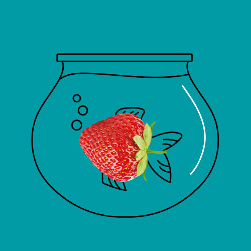 strawberry fish bowl illustration