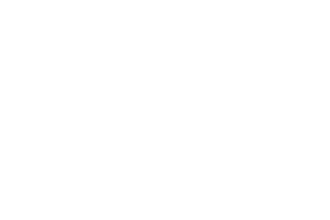 Brondello logo