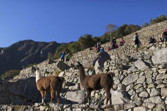 Chile3 per sacred valley ollantaytambo 06 c sat ds (1)
