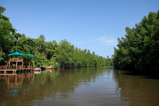 LKCMBCENBE Centara Ceysands Resort & Spa Bentota River and Mangrove