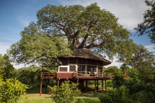 TZ Tansania Elewana Tarangire Treetops - accommodation - exterior view of Treehouse Suite (c) Silverless-6