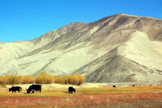 CN China Tibet Tibet Landschaft 2